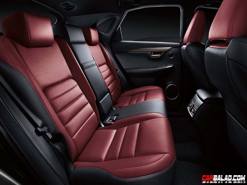 Lexus_NX_200t_Carbalad_Inside_2